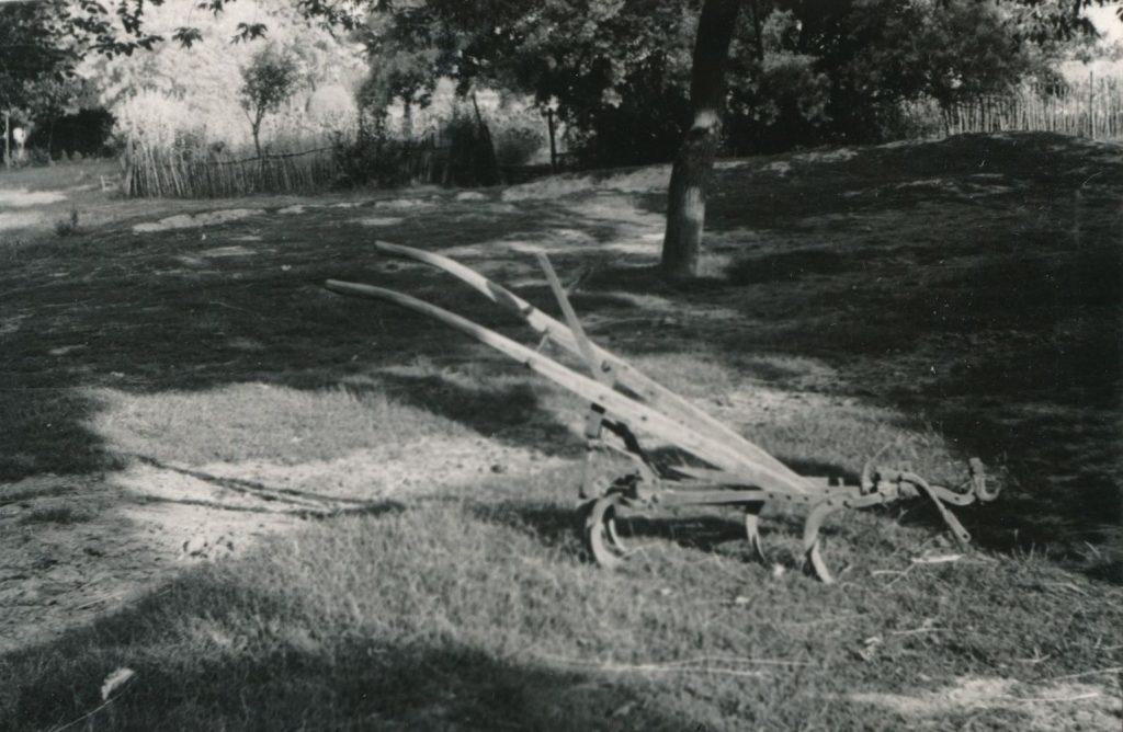 Egy ekekapa (MaNDA)