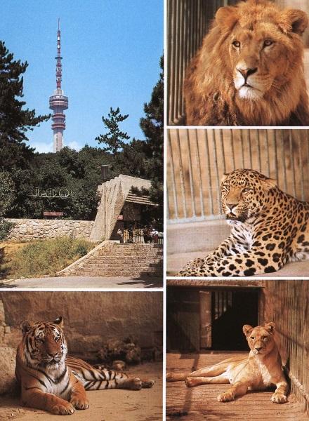 Pécsi Állatkert - Csorba Győző Könyvtár - Pécs, CC BY-NC mcitem