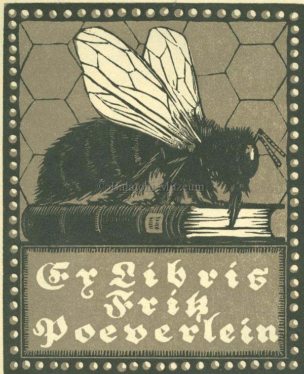 Könyvnektárt szívó méh, kisgrafika - Balatoni Múzeum, CC BY-NC-ND