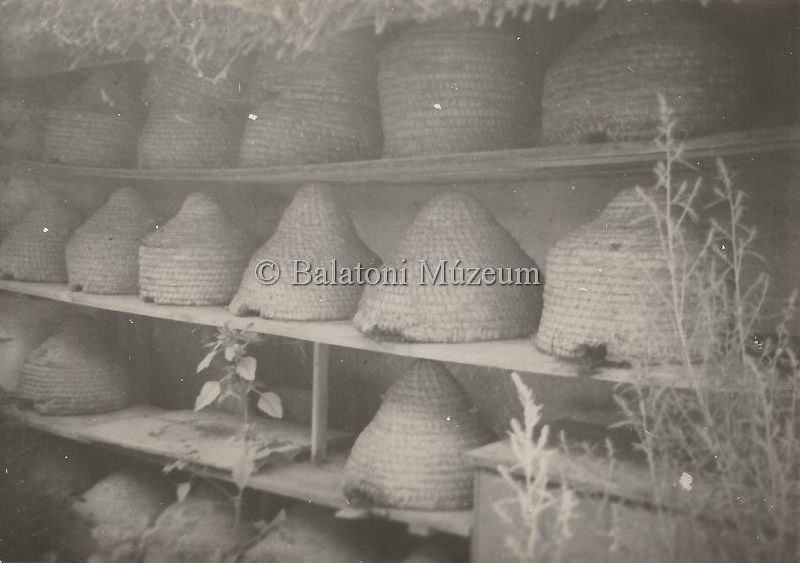 Méhes (1958) - Balatoni Múzeum, CC BY-NC-ND