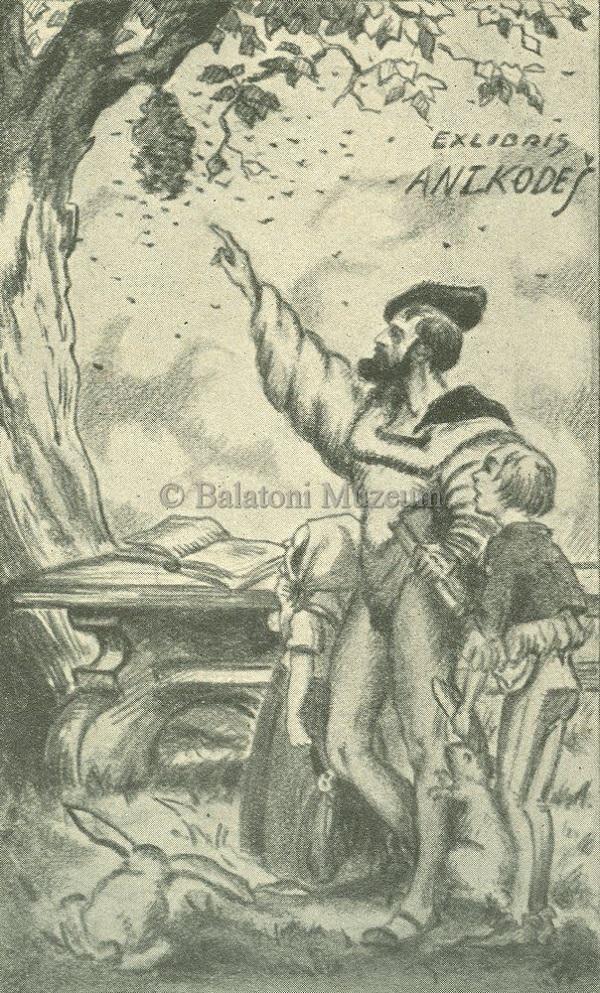 Fán csüngő méhrajt mutató férfi, kisgrafika (1930) - Balatoni Múzeum, CC BY-NC-ND