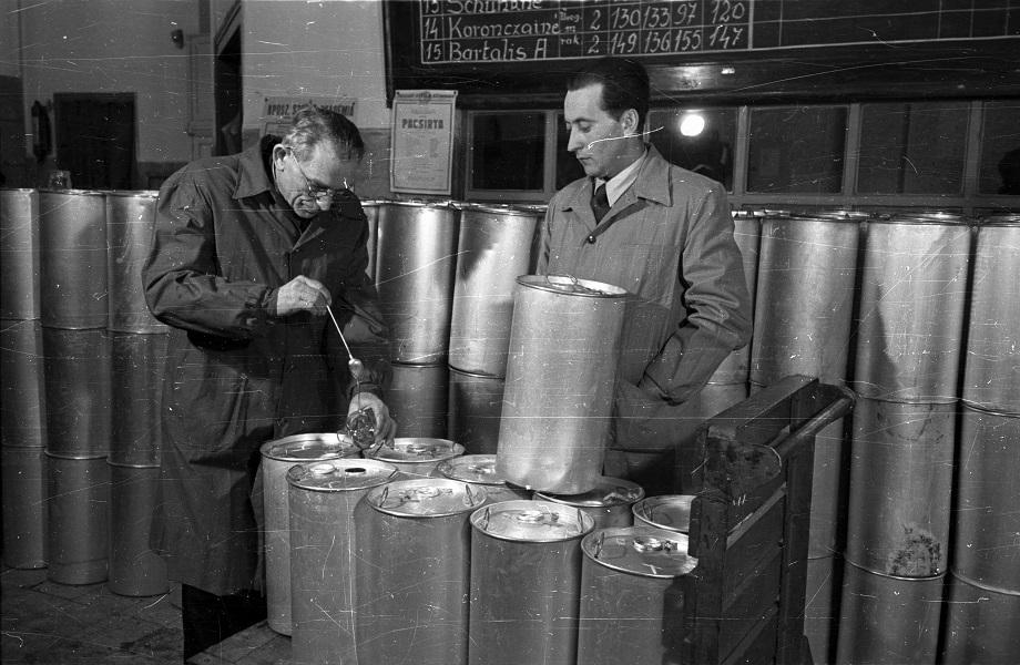 Bauer Sándor: Mézcsurgatás, ellenőrzés az Országos Méhészeti Szövetkezeti Vállalatnál (1956) - Fortepan, CC BY-SA