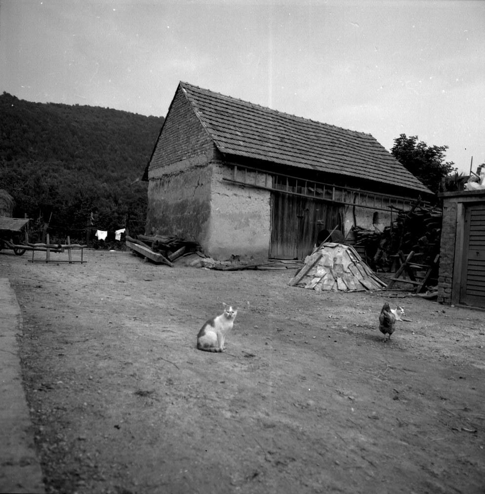 Téglából épült pajta nagy kapuval (MaNDA)