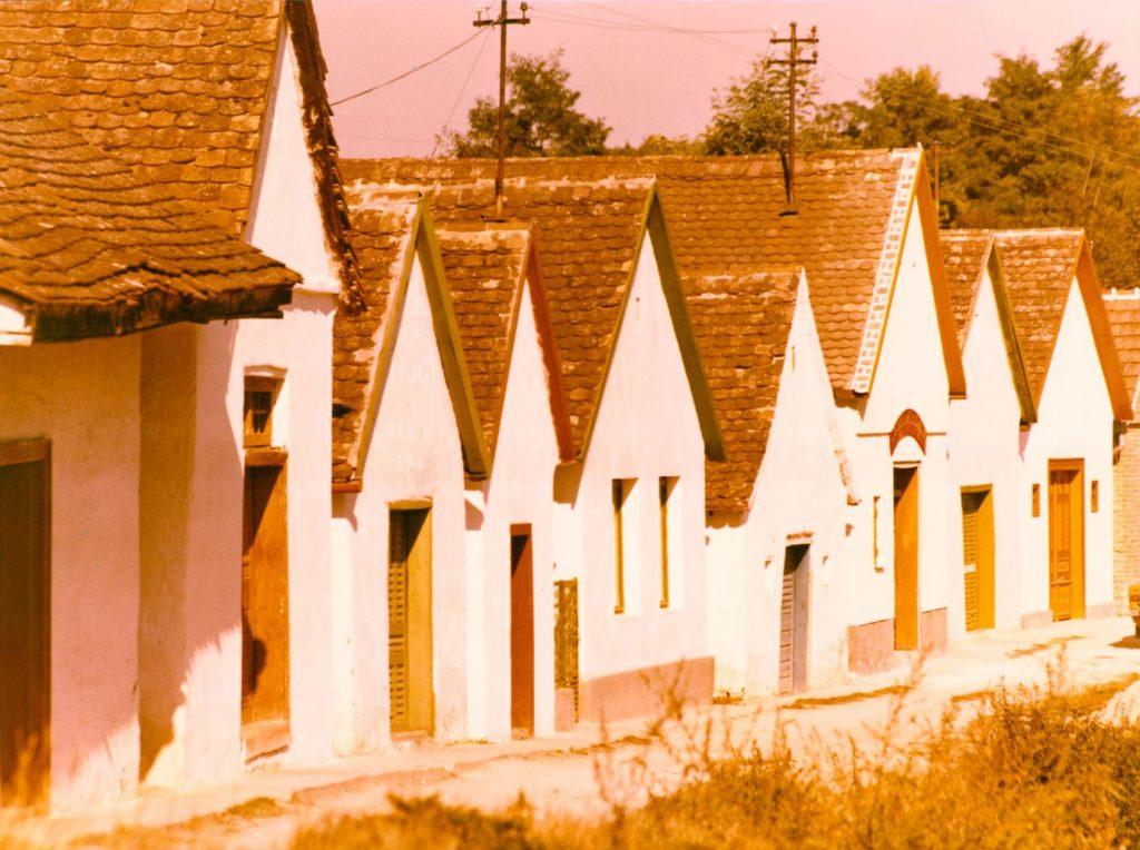 Házak Palkonyán (MaNDA)