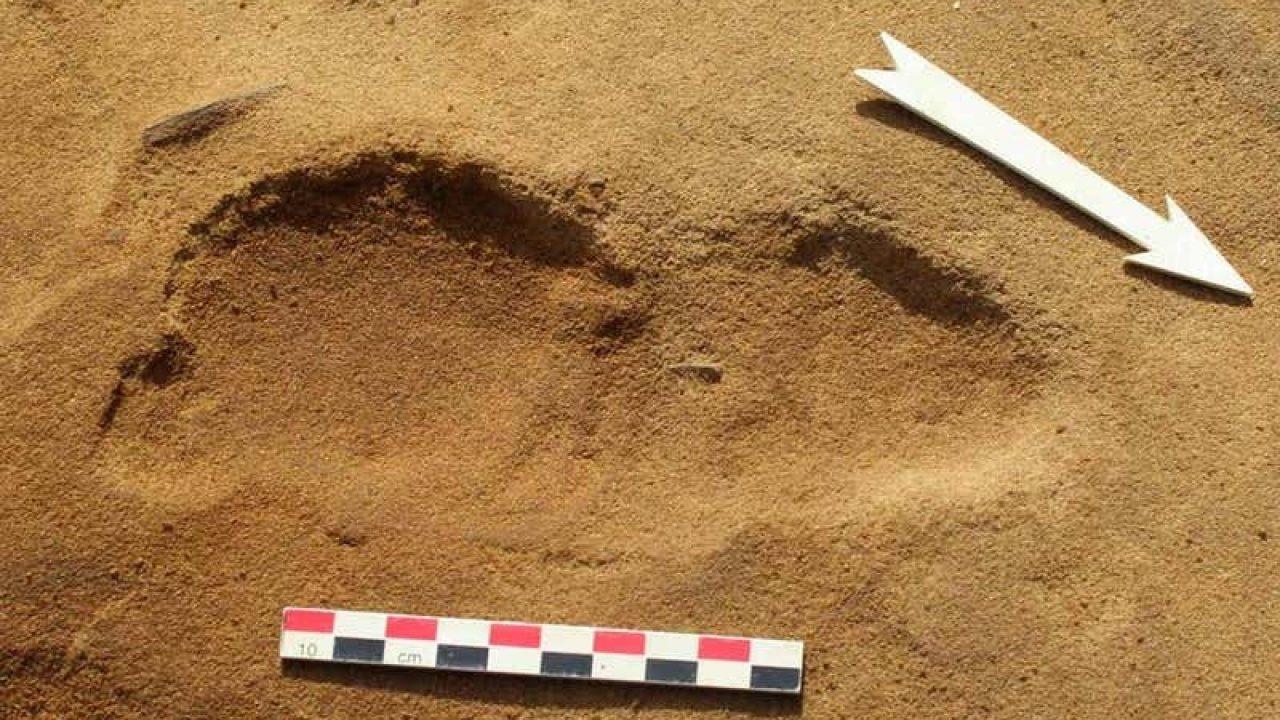 Neandervölgyiek lábnyomai a homok alatt