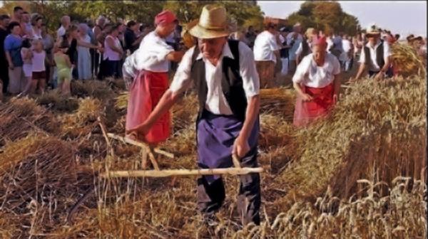 Színes lesz Bükön a nyár - Kapolcsi Kulturális és Természetvédelmi Egylet, CC BY-NC