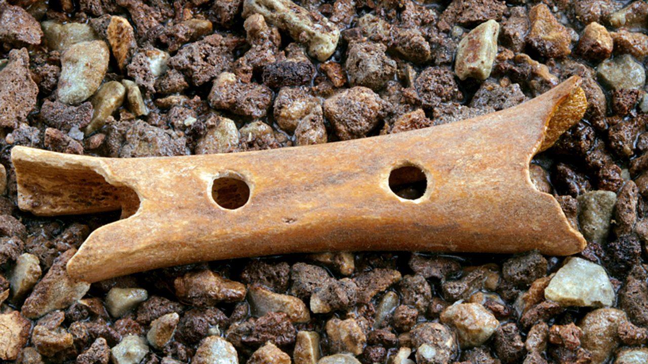 A furulya egy fiatal barlangi medve combcsontjából készült