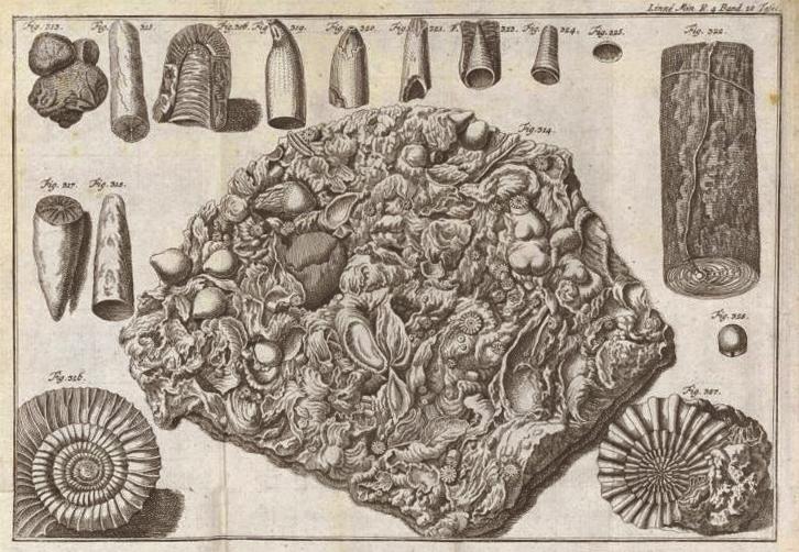 Könyvillusztráció 1777-ből, Natursystem des Mineralreichs - Miskolci Egyetem, PDM